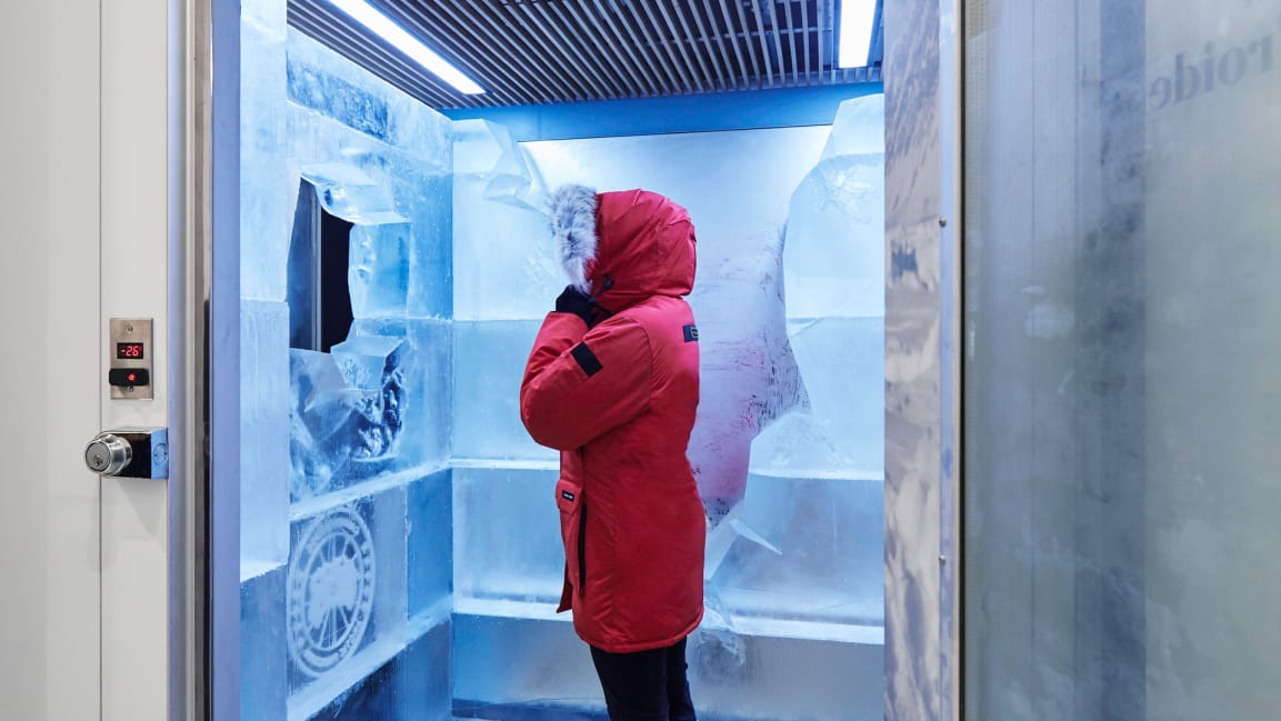 Canada Goose The Cold Room